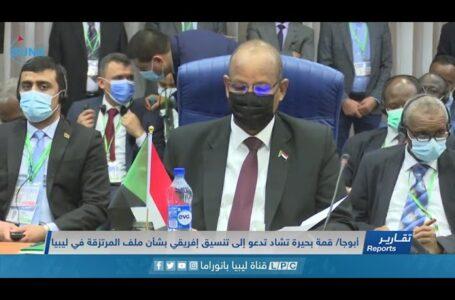 تقرير | قمة بحيرة تشاد تدعو إلى تنسيق إفريقي بشأن ملف المرتزقة في ليبيا