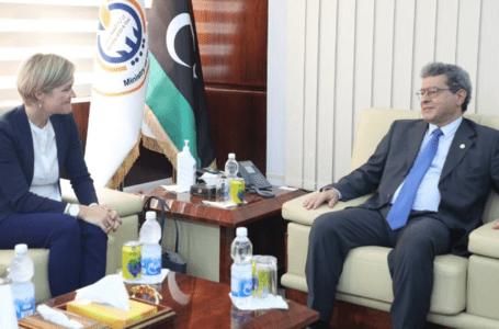 عون يبحث مع سفيرة المملكة المتحدة تطوير القطاع النفطي