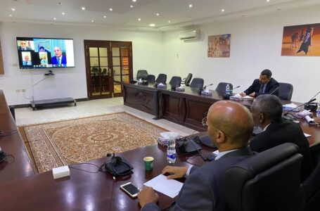 الخارجية تنظم اجتماعا افتراضيا مع رؤساء البعثات في الدول العربية