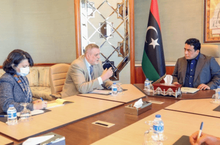 الرئاسي يبحث مع البعثة الأممية خطوات خروج المرتزقة